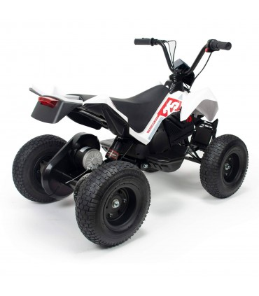 Quad X-Treme Dirt 24V