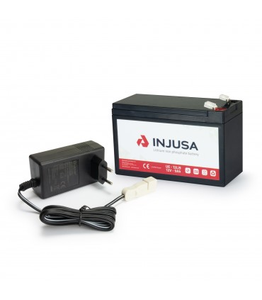 12V Lithium Battery and Charger Set