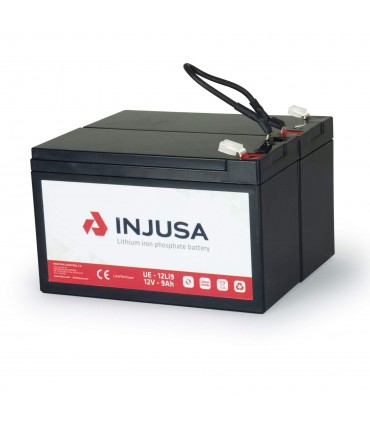 24V Lithium Battery and Charger Set